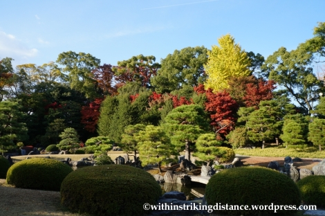 23Nov14 017 Autumn Leaves Nijo Castle Kyoto Kansai Japan
