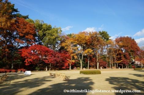 23Nov14 018 Autumn Leaves Nijo Castle Kyoto Kansai Japan