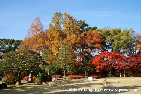 23Nov14 019 Autumn Leaves Nijo Castle Kyoto Kansai Japan