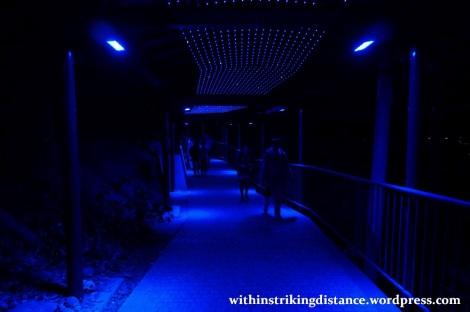 26Mar15 002 Japan Kyushu Nagasaki Mount Inasa Night View