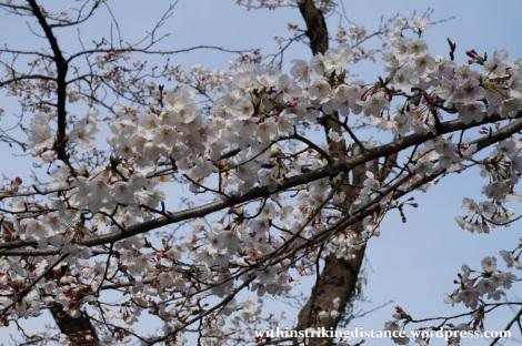 27Mar15 008 Japan Kyushu Kumamoto Suizenji Jojuen Garden