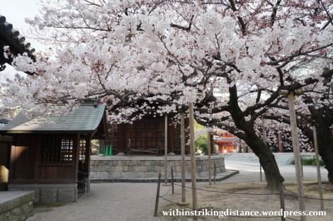 28Mar15 003 Japan Kyushu Fukuoka Tochoji Temple Sakura Cherry Blossoms