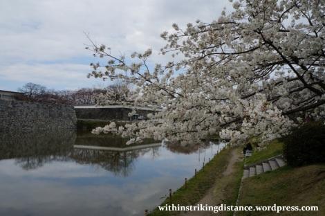 28Mar15 004 Japan Kyushu Fukuoka Castle Maizuru Ohori Park Sakura Cherry Blossom