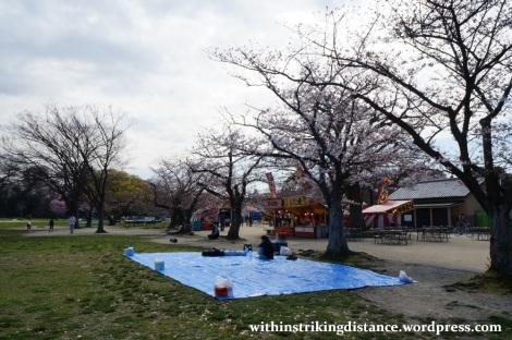28Mar15 020 Japan Kyushu Fukuoka Castle Maizuru Ohori Park Sakura Cherry Blossom