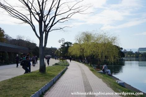28Mar15 023 Japan Kyushu Fukuoka Castle Maizuru Ohori Park Sakura Cherry Blossom