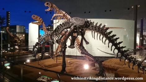 30Jun15 007 Japan Honshu Fukui Prefectural Dinosaur Museum