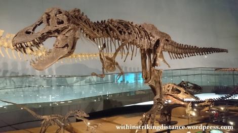 30Jun15 008 Japan Honshu Fukui Prefectural Dinosaur Museum