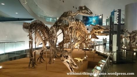 30Jun15 012 Japan Honshu Fukui Prefectural Dinosaur Museum