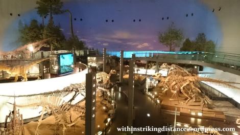 30Jun15 015 Japan Honshu Fukui Prefectural Dinosaur Museum