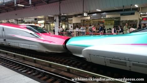 03Jul15 001 Tokyo Station JR East Tohoku Akita Shinkansen Coupled E5 E6 Series Bullet Train
