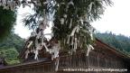 06jul15-021-japan-honshu-shimane-izumo-taisha-shrine