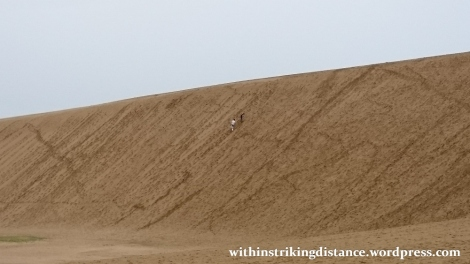 08jul15-004-japan-tottori-sand-dunes-sakyu