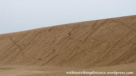 08jul15-004-japan-tottori-sand-dunes-sakyu