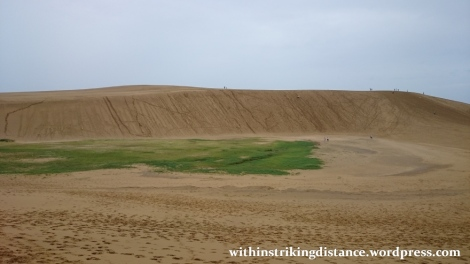 08jul15-009-japan-tottori-sand-dunes-sakyu