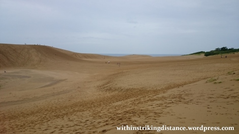 08jul15-010-japan-tottori-sand-dunes-sakyu
