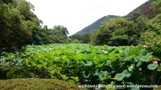 10jul15-001-japan-shikoku-kagawa-takamatsu-ritsurin-koen-garden
