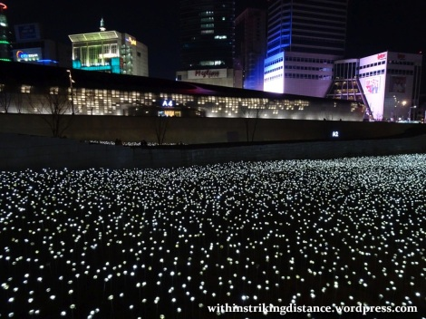 07feb16-007-south-korea-seoul-dongdaemun-design-plaza-led-rose-garden
