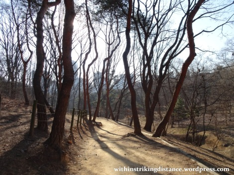 09feb16-015-south-korea-seoul-seonjeongneung-joseon-royal-tombs