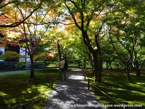 12nov16-004-japan-kyoto-higashiyama-tofukuji-autumn-leaves-koyo