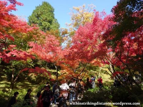 12nov16-005-japan-kyoto-higashiyama-tofukuji-autumn-leaves-koyo