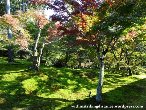 12nov16-012-japan-kyoto-higashiyama-tofukuji-autumn-leaves-koyo